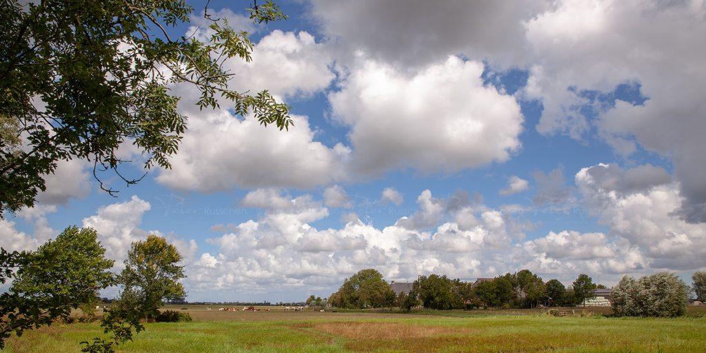 Landschapsfoto Westerdijkshorn, Bedum